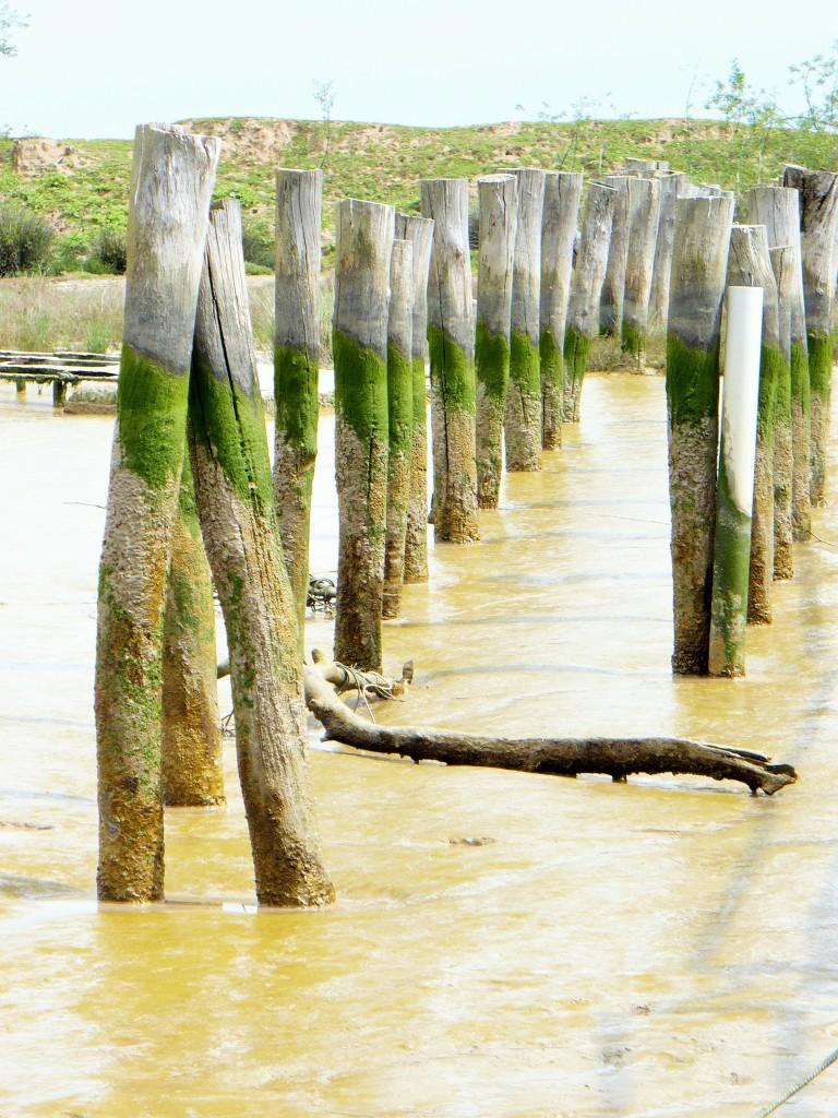 Restos del antiguo embarcadero